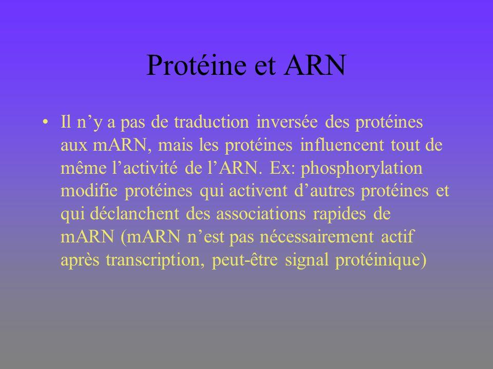 Protéine et ARN