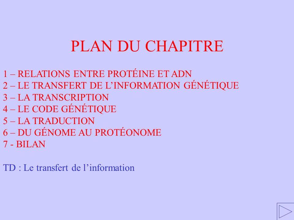 PLAN DU CHAPITRE 1 – RELATIONS ENTRE PROTÉINE ET ADN