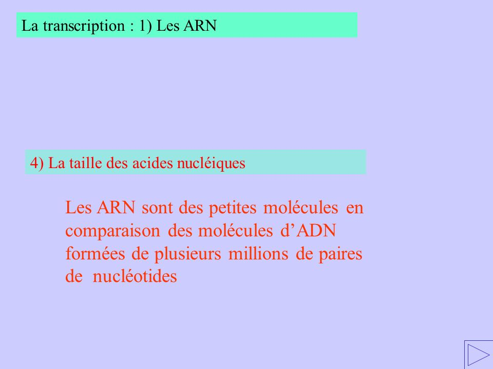 La transcription : 1) Les ARN