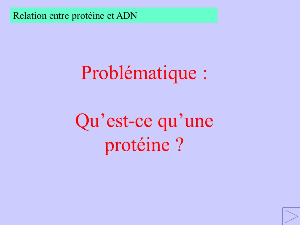 Qu'est-ce qu'une protéine