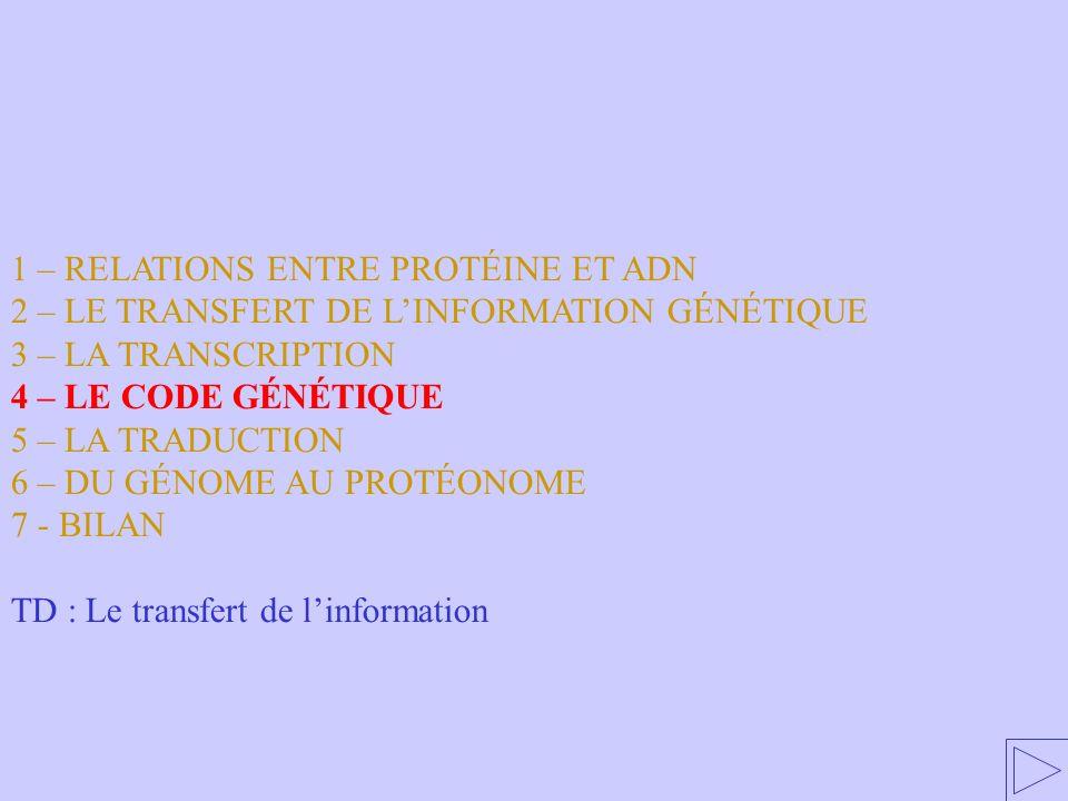 1 – RELATIONS ENTRE PROTÉINE ET ADN