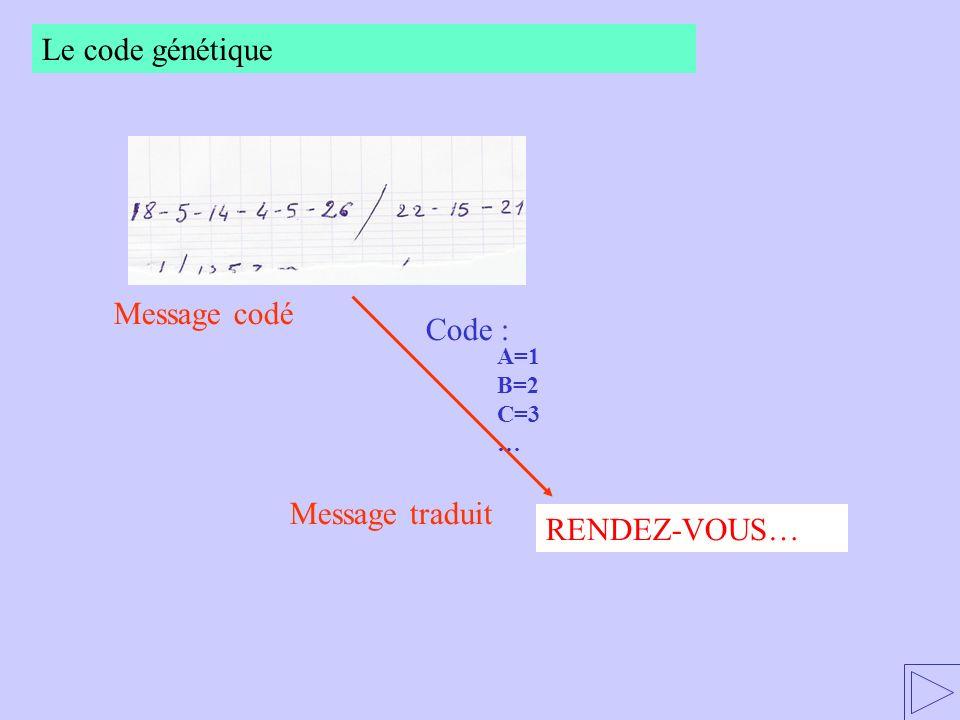 Le code génétique Message codé Code : Message traduit RENDEZ-VOUS…
