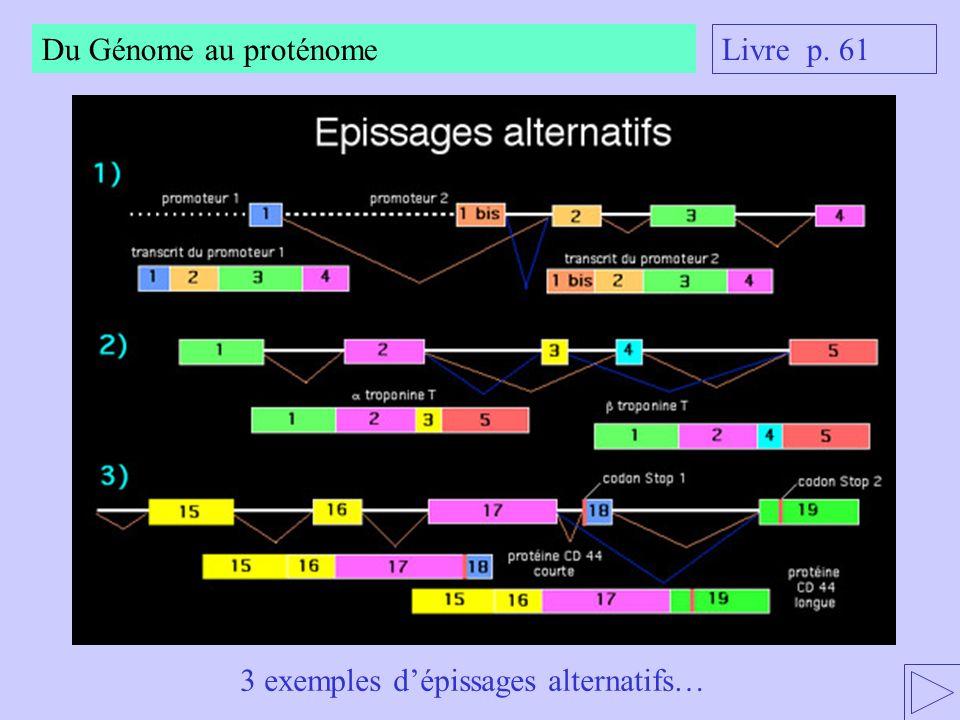 Du Génome au proténome Livre p. 61 3 exemples d'épissages alternatifs…