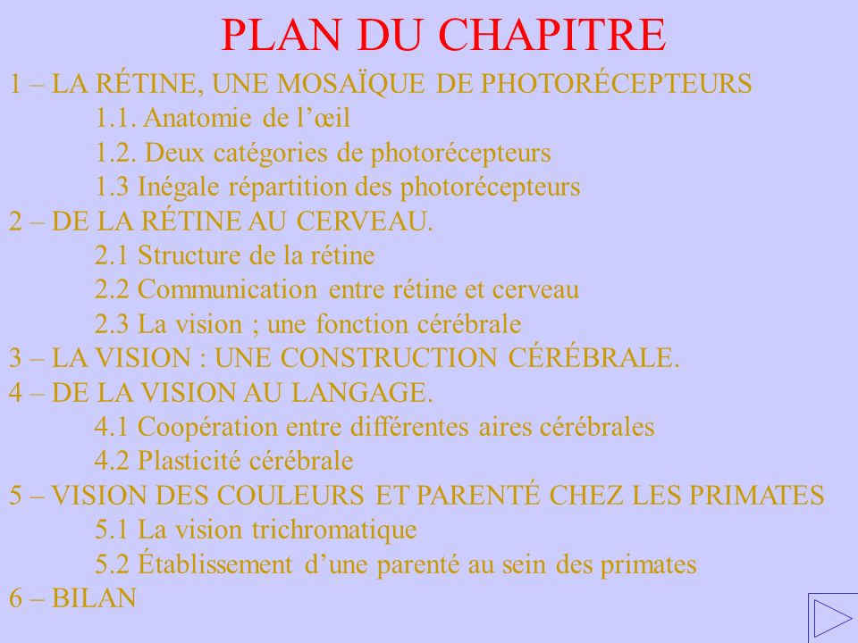 PLAN DU CHAPITRE 1 – LA RÉTINE, UNE MOSAÏQUE DE PHOTORÉCEPTEURS