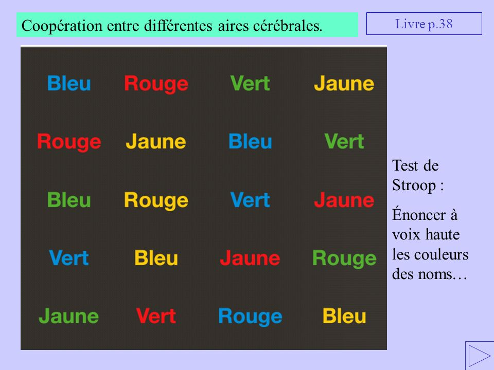 Coopération entre différentes aires cérébrales.