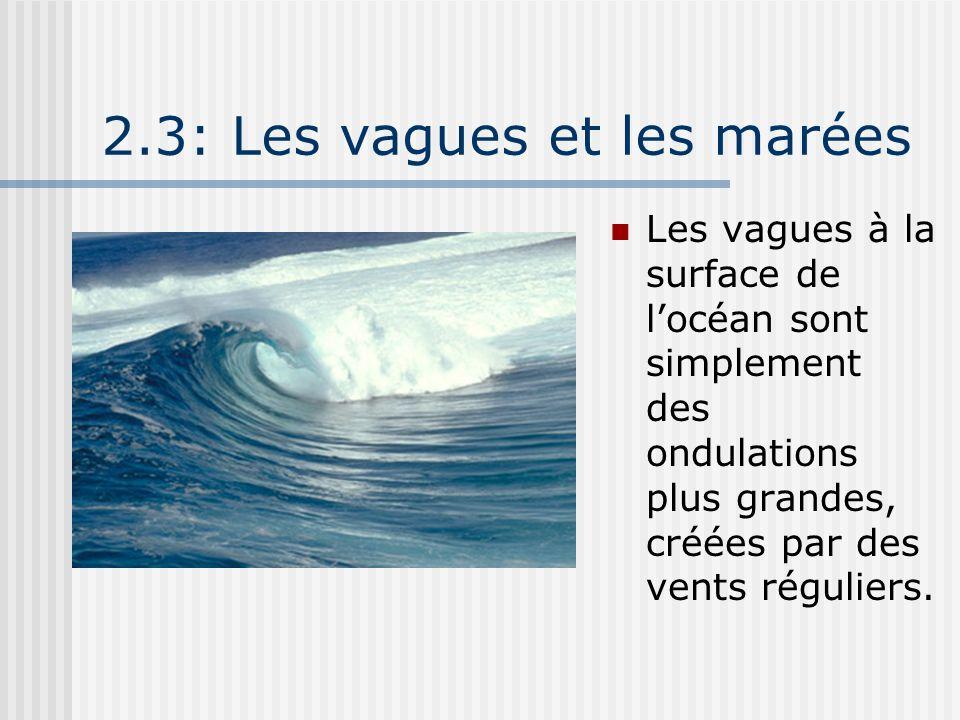 2.3: Les vagues et les marées
