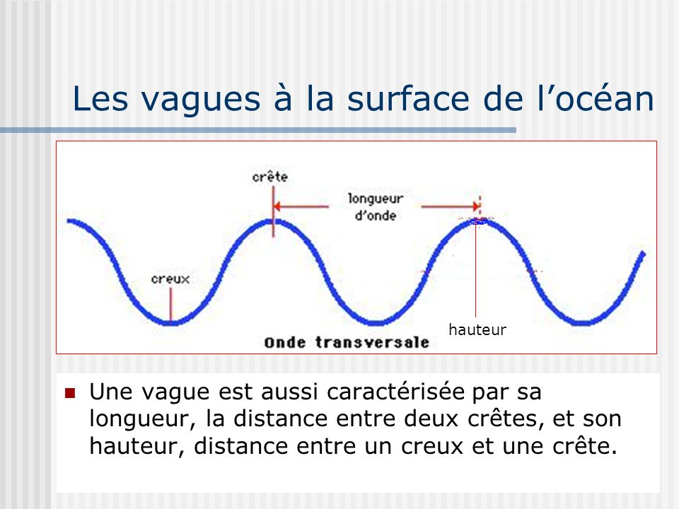 Les vagues à la surface de l'océan