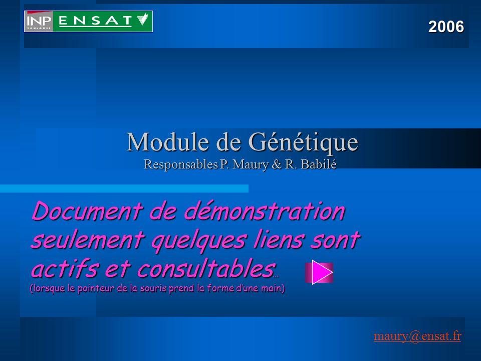 Responsables P. Maury & R. Babilé