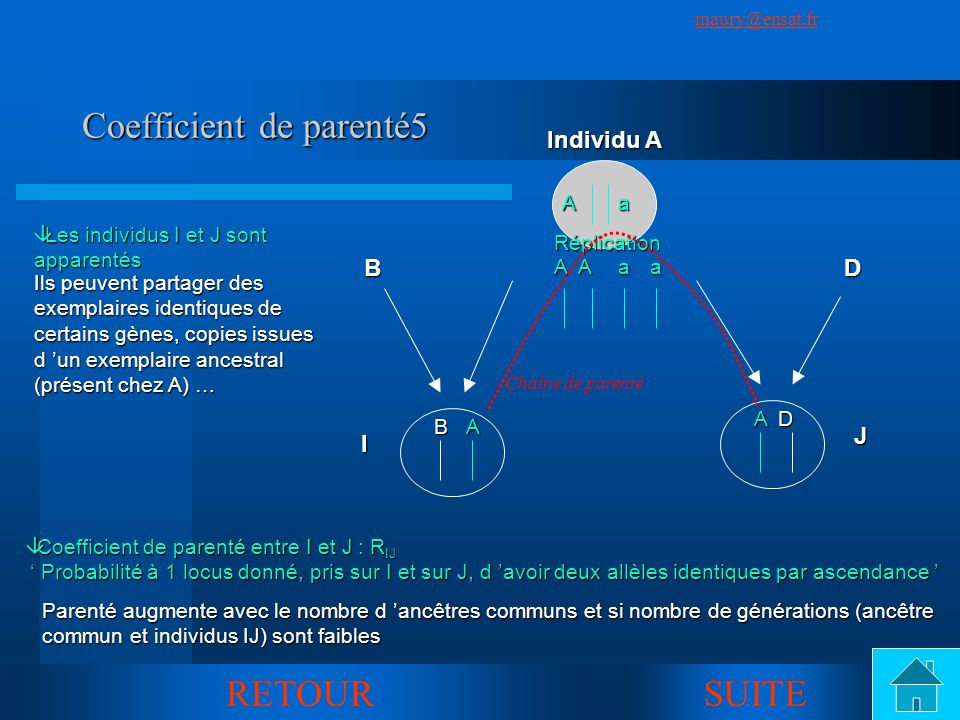 Coefficient de parenté5