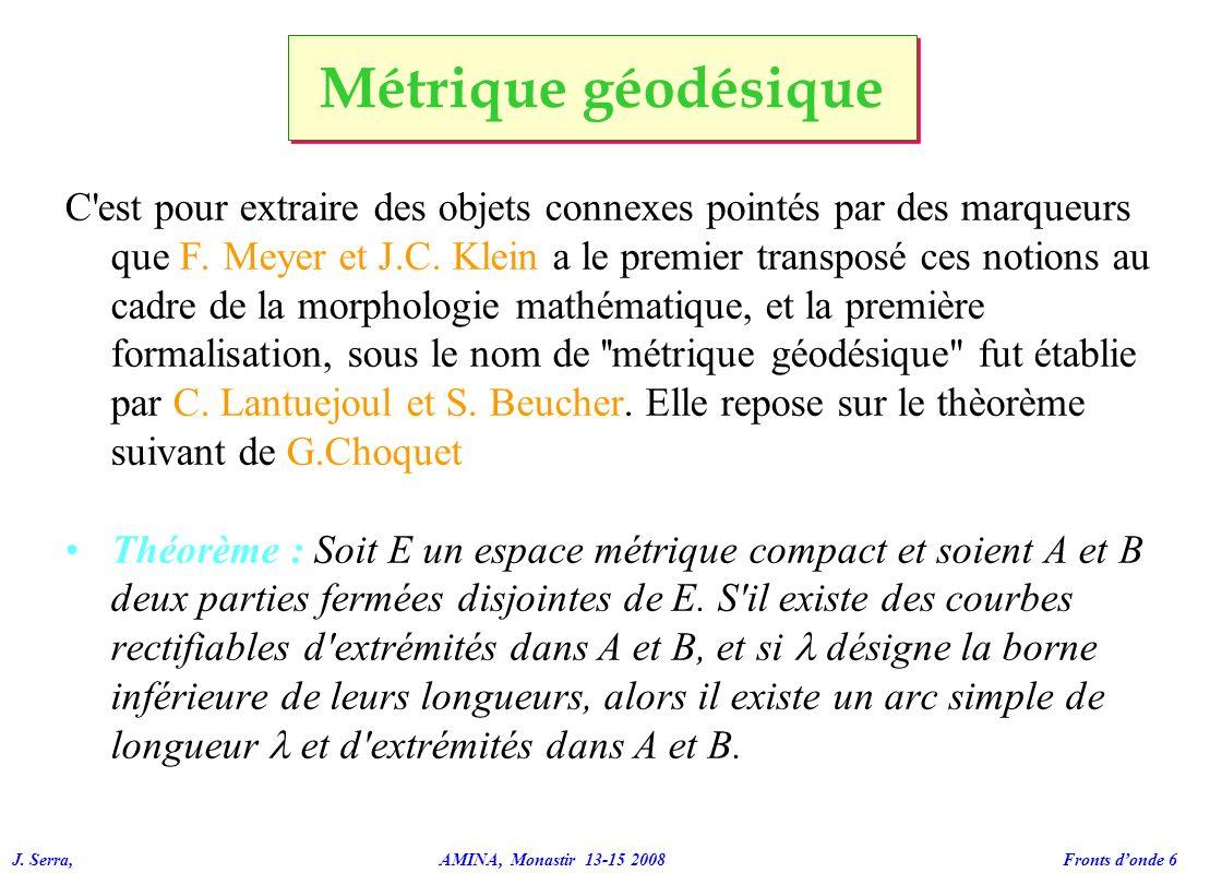 Métrique géodésique