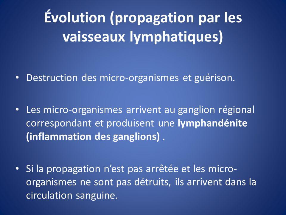 Évolution (propagation par les vaisseaux lymphatiques)