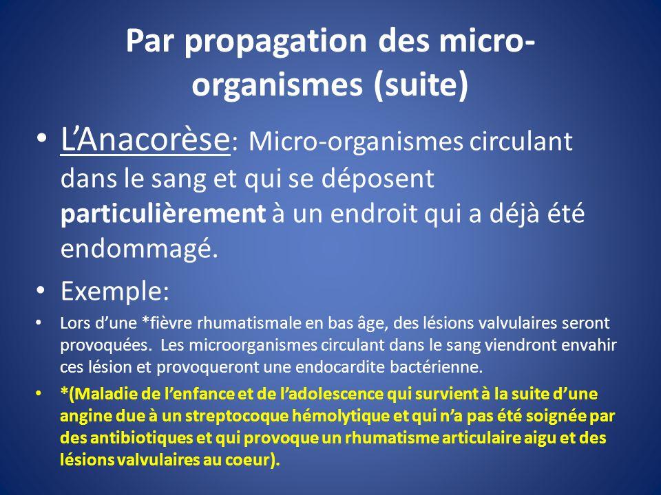 Par propagation des micro-organismes (suite)