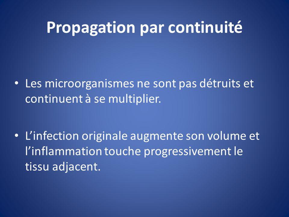 Propagation par continuité