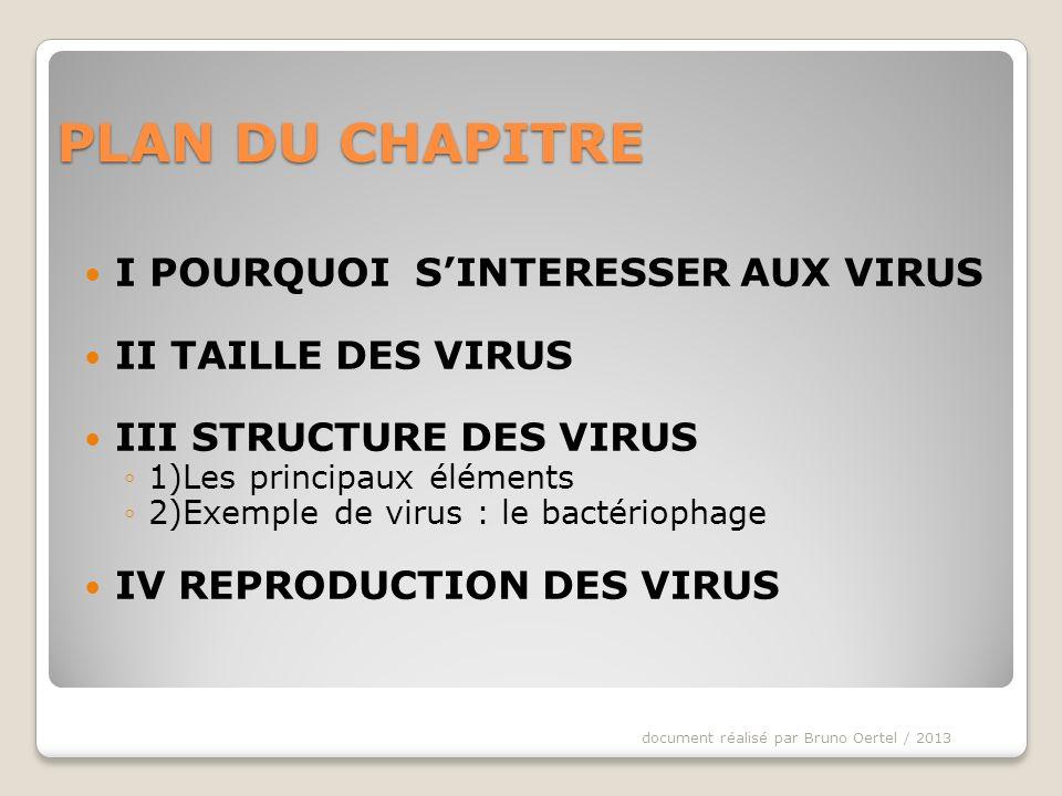 PLAN DU CHAPITRE I POURQUOI S'INTERESSER AUX VIRUS II TAILLE DES VIRUS