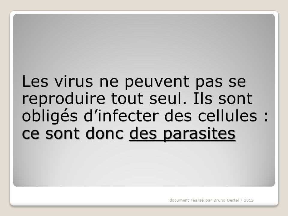 Les virus ne peuvent pas se reproduire tout seul