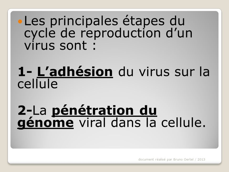 Les principales étapes du cycle de reproduction d'un virus sont :
