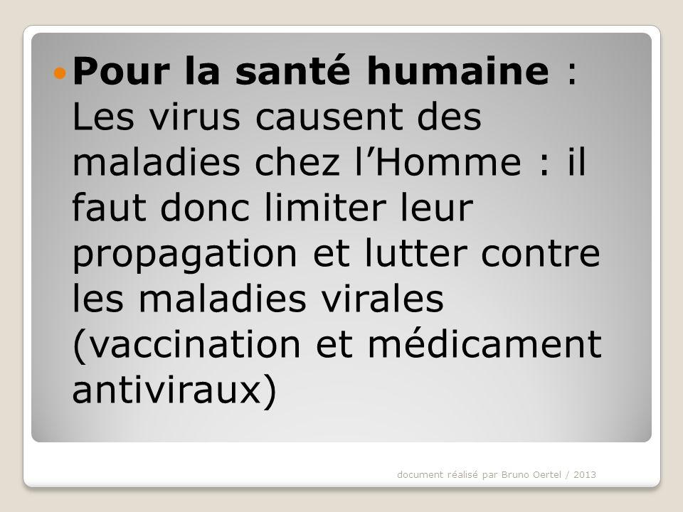 Pour la santé humaine : Les virus causent des maladies chez l'Homme : il faut donc limiter leur propagation et lutter contre les maladies virales (vaccination et médicament antiviraux)
