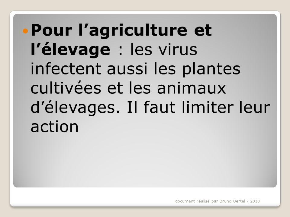 Pour l'agriculture et l'élevage : les virus infectent aussi les plantes cultivées et les animaux d'élevages. Il faut limiter leur action