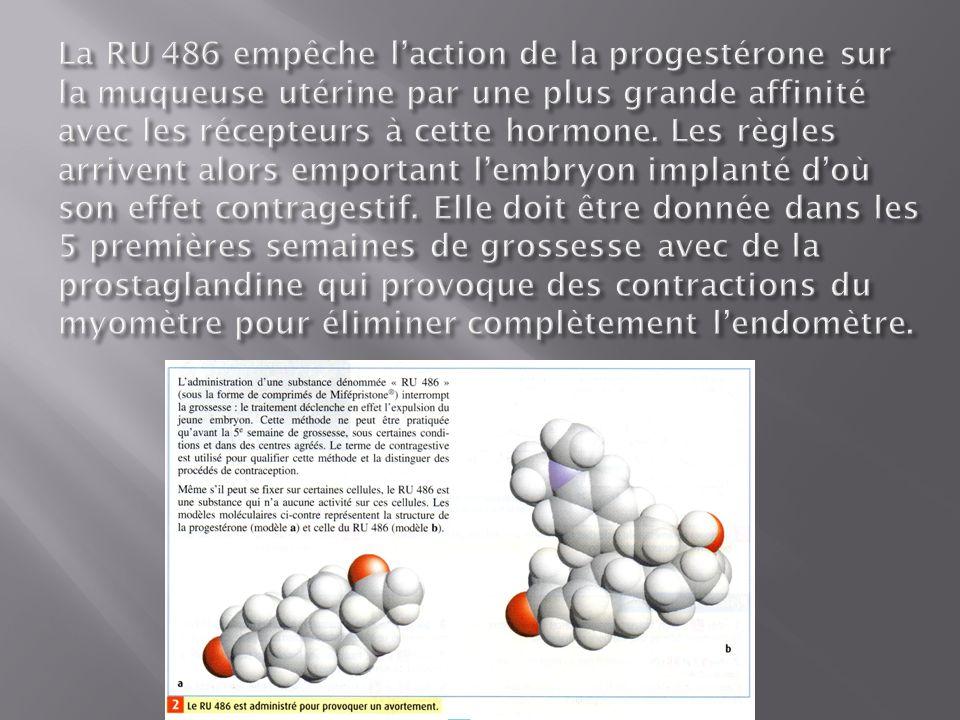 La RU 486 empêche l'action de la progestérone sur la muqueuse utérine par une plus grande affinité avec les récepteurs à cette hormone.
