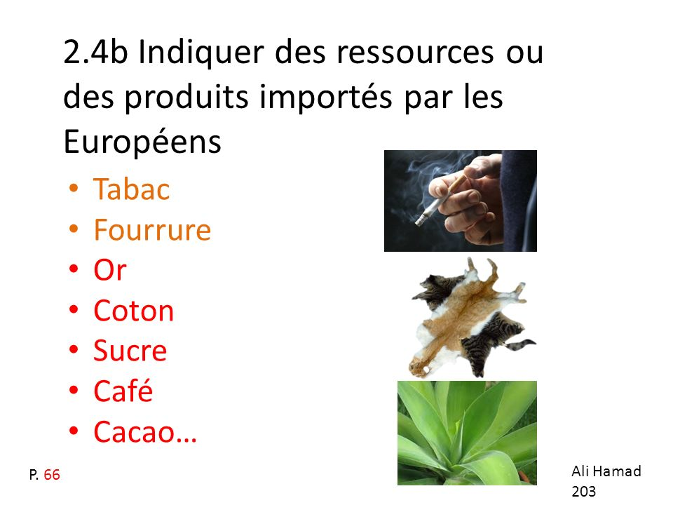 2.4b Indiquer des ressources ou des produits importés par les Européens