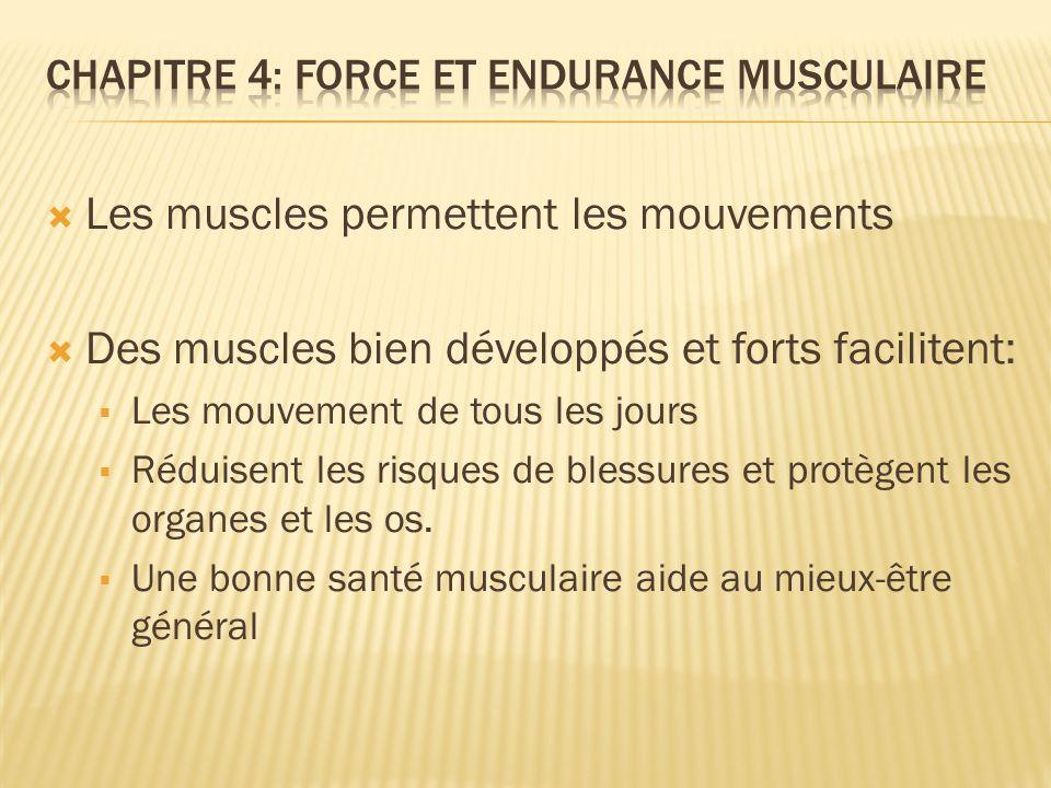 Chapitre 4: force et endurance musculaire