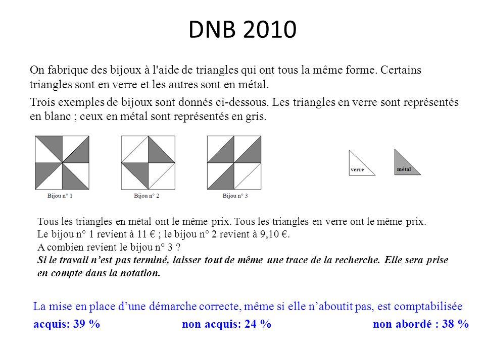 DNB 2010