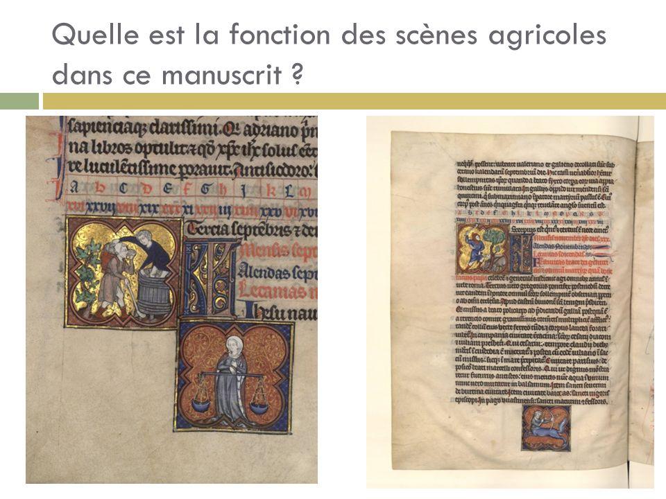 Quelle est la fonction des scènes agricoles dans ce manuscrit
