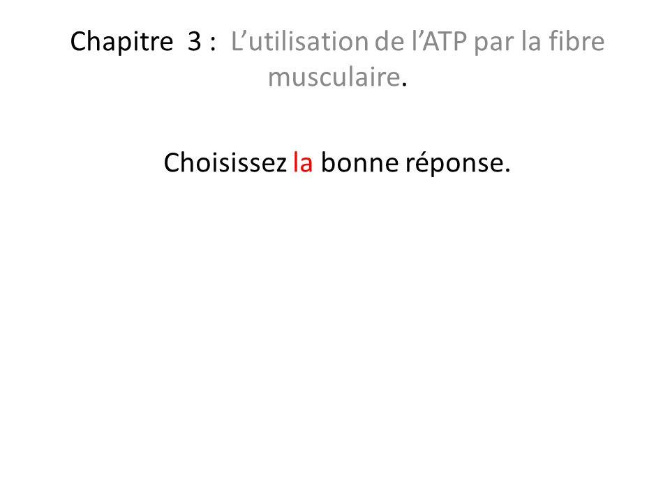 Chapitre 3 : L'utilisation de l'ATP par la fibre musculaire.