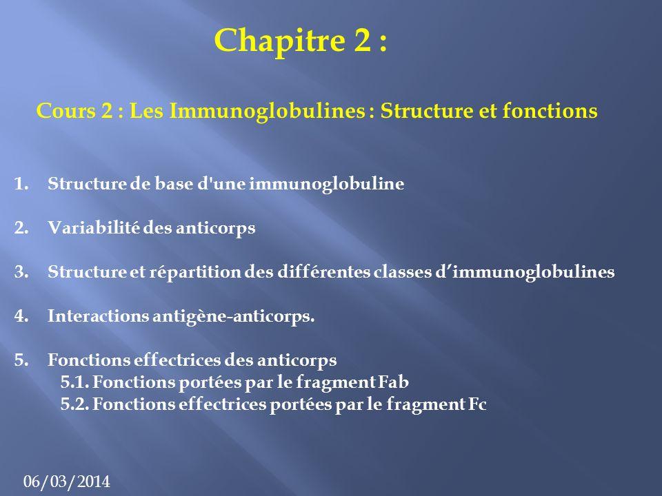 Cours 2 : Les Immunoglobulines : Structure et fonctions