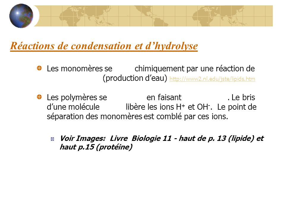Réactions de condensation et d'hydrolyse