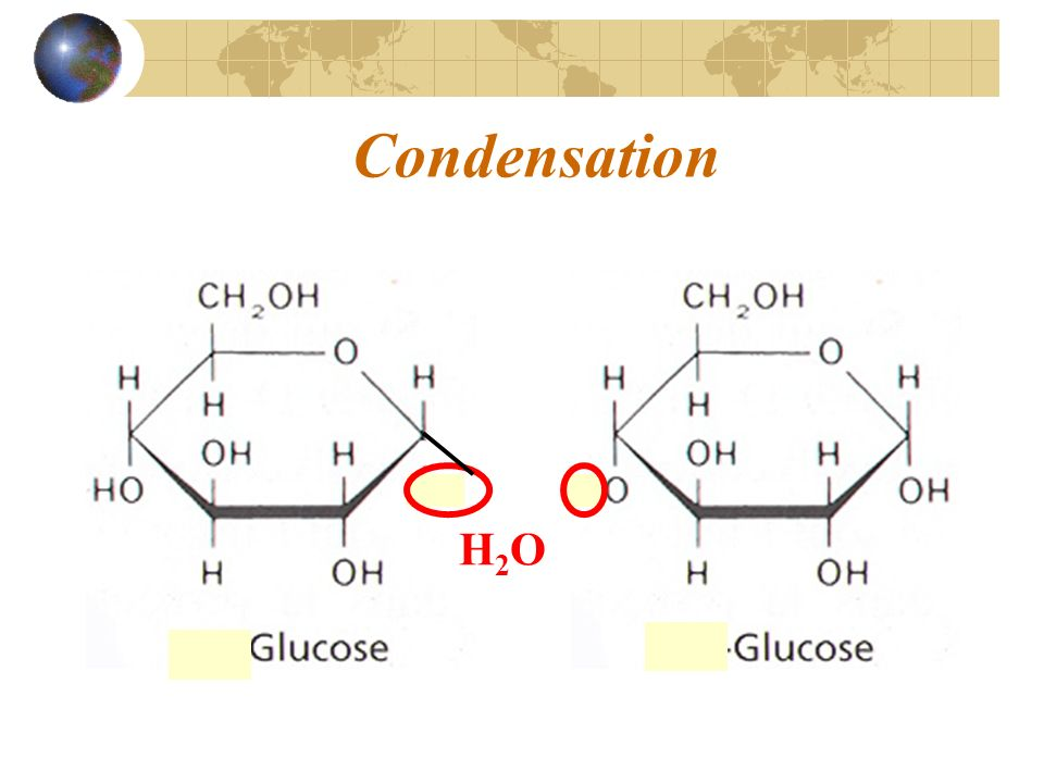 Condensation H2O