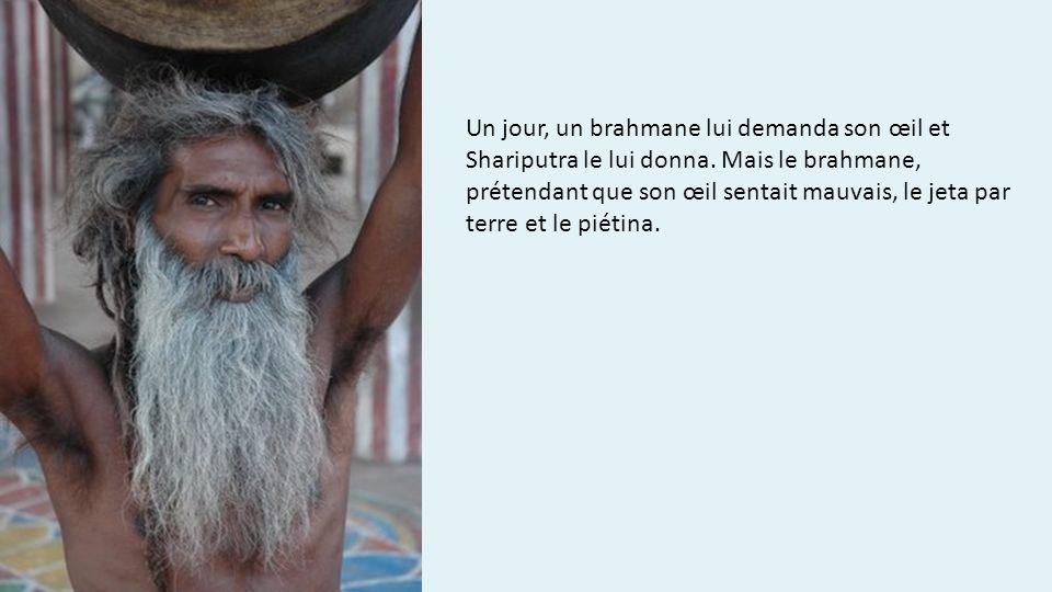 Un jour, un brahmane lui demanda son œil et Shariputra le lui donna