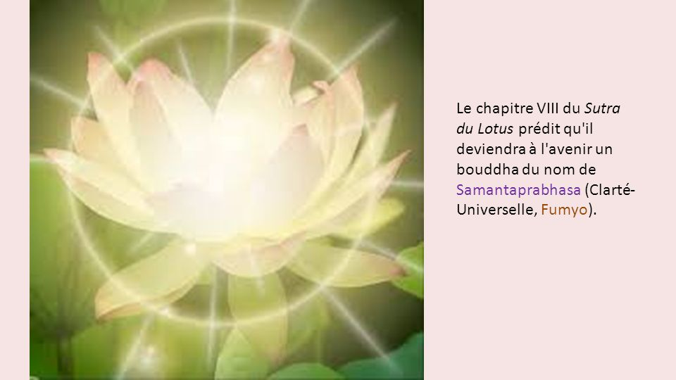 Le chapitre VIII du Sutra du Lotus prédit qu il deviendra à l avenir un bouddha du nom de Samantaprabhasa (Clarté-Universelle, Fumyo).