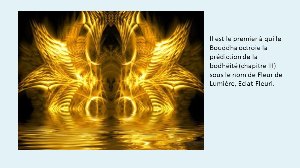 Il est le premier à qui le Bouddha octroie la prédiction de la bodhéité (chapitre III) sous le nom de Fleur de Lumière, Eclat-Fleuri.