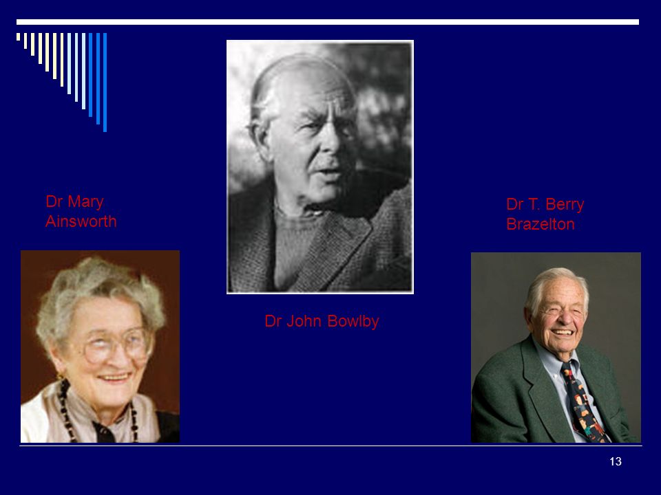 Dr Mary Ainsworth Dr T. Berry Brazelton Dr John Bowlby