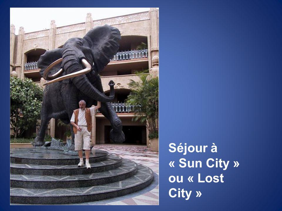 Séjour à « Sun City » ou « Lost City »