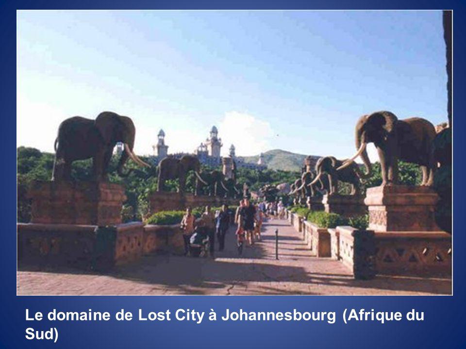 Le domaine de Lost City à Johannesbourg (Afrique du Sud)