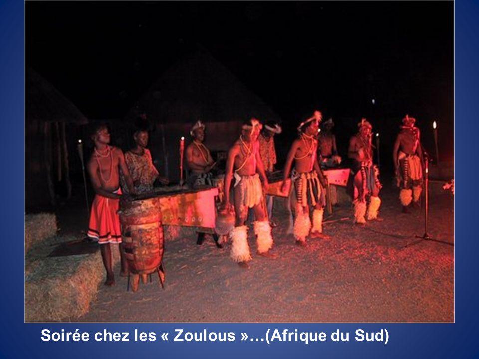 Soirée chez les « Zoulous »…(Afrique du Sud)