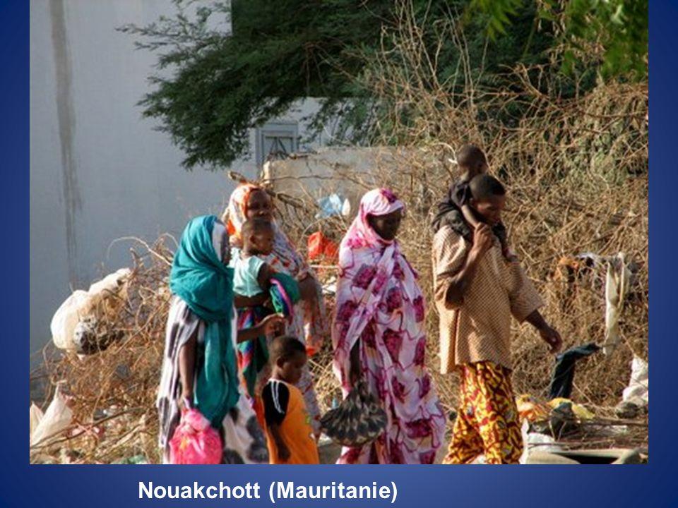 Nouakchott (Mauritanie)