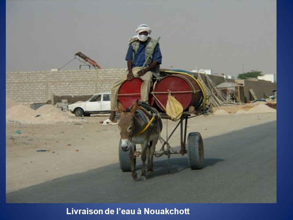 Livraison de l'eau à Nouakchott
