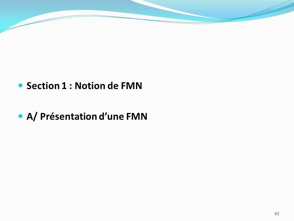 Section 1 : Notion de FMN A/ Présentation d'une FMN