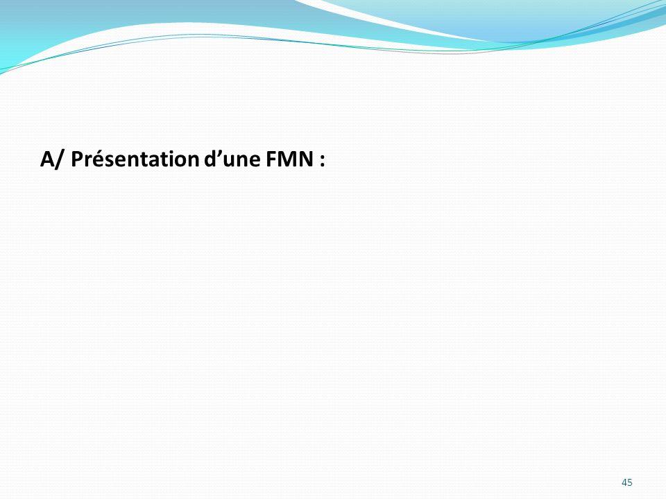 A/ Présentation d'une FMN :