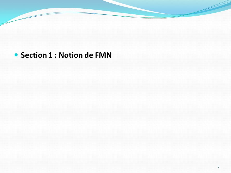 Section 1 : Notion de FMN
