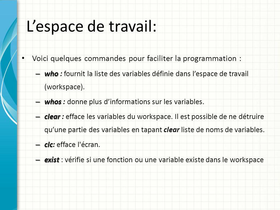 L'espace de travail: Voici quelques commandes pour faciliter la programmation :