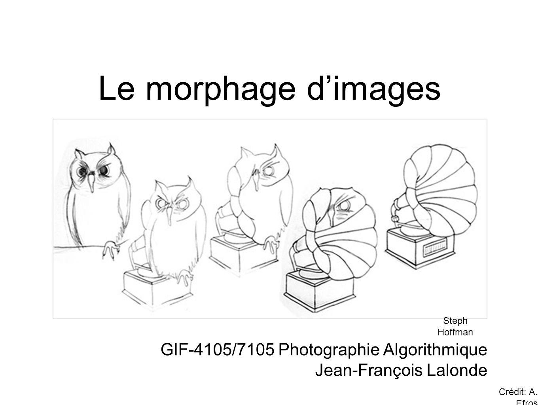 Le morphage d'images GIF-4105/7105 Photographie Algorithmique