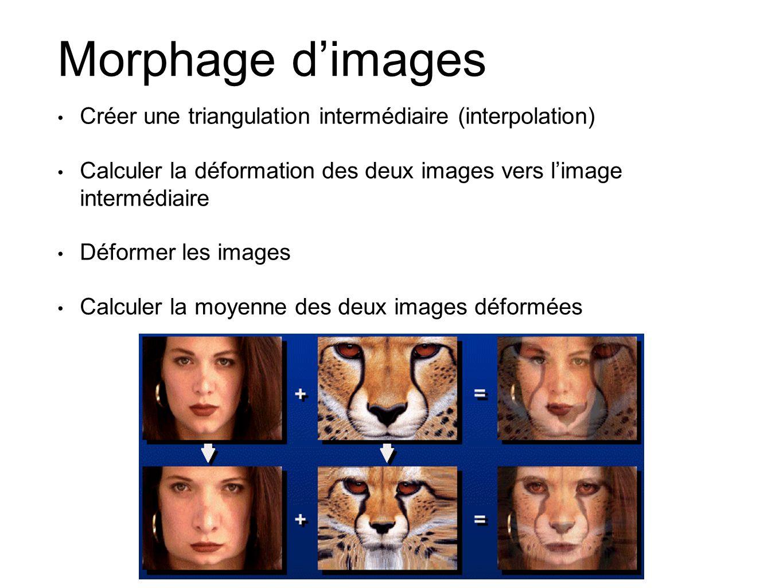 Morphage d'images Créer une triangulation intermédiaire (interpolation) Calculer la déformation des deux images vers l'image intermédiaire.
