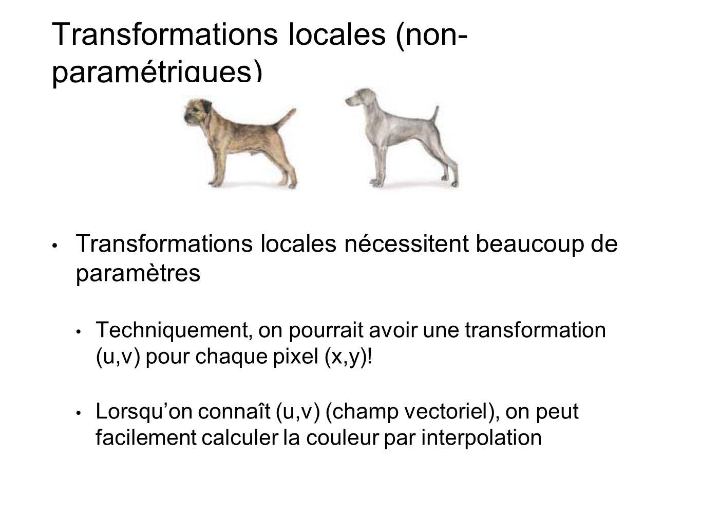 Transformations locales (non-paramétriques)