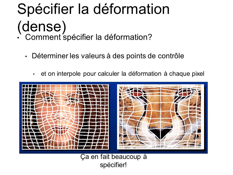 Spécifier la déformation (dense)