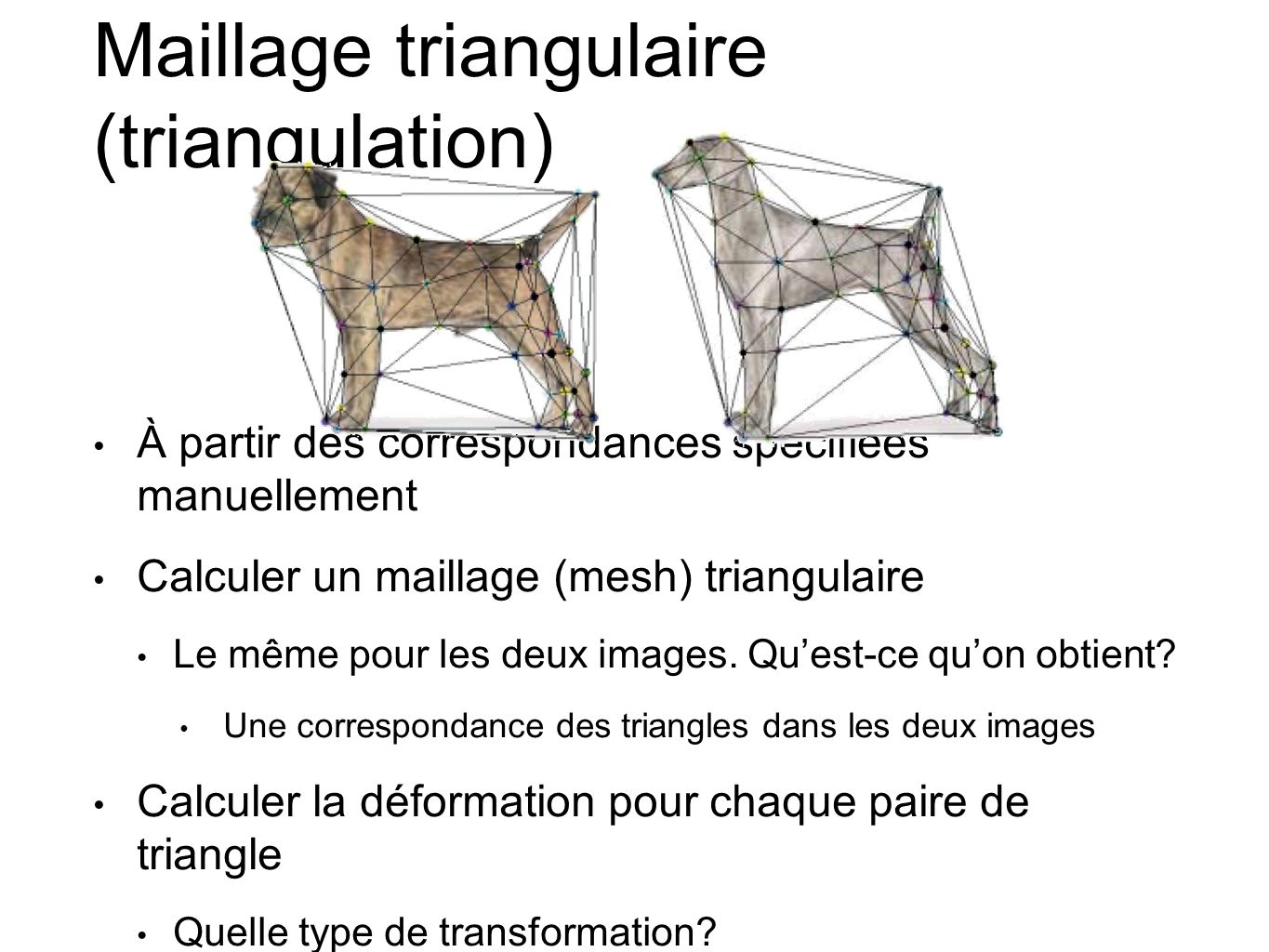 Maillage triangulaire (triangulation)