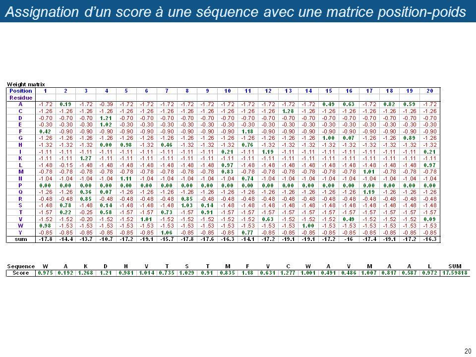 Assignation d'un score à une séquence avec une matrice position-poids